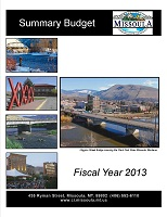 Summary Budget Fiscal Year 2013 Cover