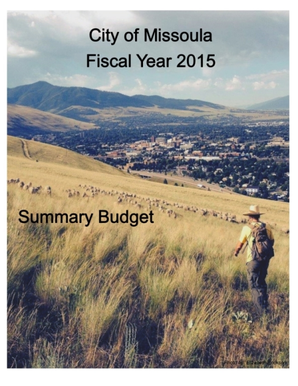 Web FY15 Budget Cover