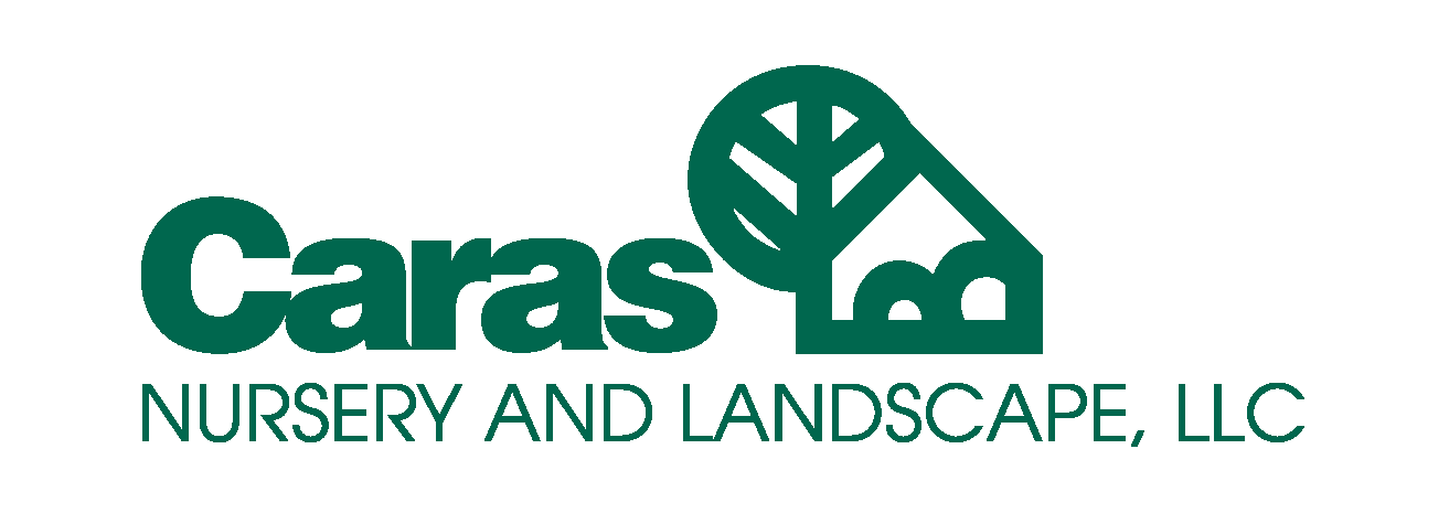 caras logo pyramid - Copy